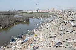 Aguas estancadas, residuos y desmonte  se aglomeran en extensión de humedal